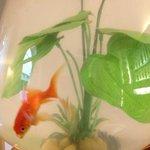 Fish bowl in lobby ;)