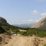 Boquer Valley