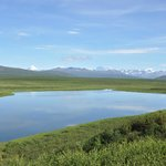 View from Denali Highway