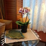Beautiful orchid in our room