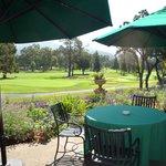 ゴルフコースを眺める
