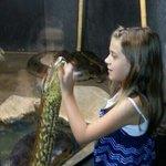 loving the snakes
