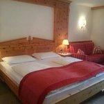 Photo of Hotel Scherlin