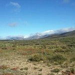 Wake up to a true karoo view! Breathtaking. ..