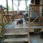 Rice Hut veranda
