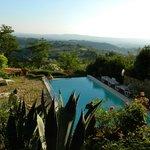 Garten/Pool