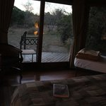 our room at Bushwillow Lodge. Animals (warthogs, giraffe & nyalas) come to visit our rooms somet