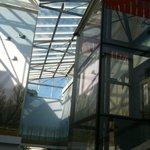 Entrata Museo Civico di Zoologia