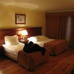Apartamento muito confortável
