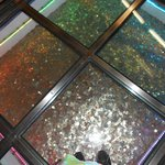 elevator shaft full of coins
