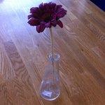 designer's vase