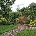 Cedar Suite Landscape