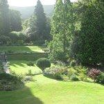 Garden view from Wren