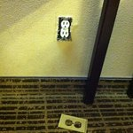 The exposed electrical outlet