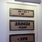Bronze Floor ***