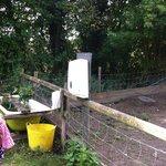 Petting area handwashing