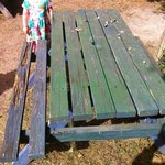Picnic bench in the petting area
