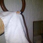 asciugamani forniti dal albergo