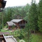 Vista dal balcone della camera (bosco, centro benessere e prati)