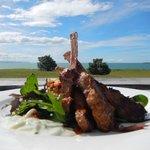 NZ Lamb & Views