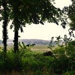 Photo de Yelloh ! Village Parc de Montsabert