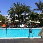 piscine chauffe hotel