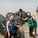 Bagno con gli elefanti - Chitwan