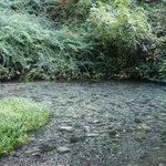 torrente Anapo