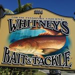 Whitney's Bait and Tackle (across from Traders)