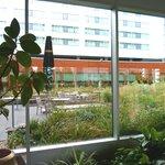 Blick von der Hotelhalle auf Gartenbereich und Speisesaal