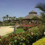Otro Bar de la Playa
