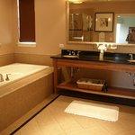 Jacuzzi tub, extra large shower