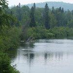 La rivière du Loup et la vue perpétuelle de la nature