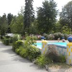 Pool and campsite