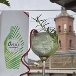 Gin tonic premiun Rives