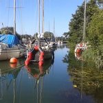 Nearby Lydney Harbour