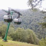 Hawks Nest Tram