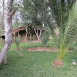 Villa des Palmiers de l'Oasis Foto