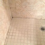 Suite 109 Shower grouting