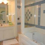 master bath tub & shower & only 1 towel bar
