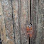 Ancient Hinge of Door