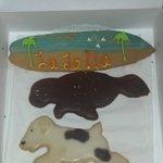 Souvenir cookies