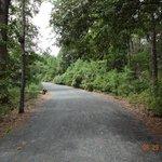 Junction Breakwater Trail