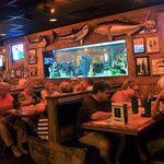 Flanigan's 300 gallon fish tank