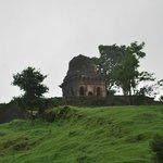 Green Mandu during the monsoons