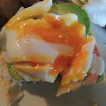 Do you see how the yolk is orange!! SO FRESH
