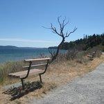 Trail close to the beach.