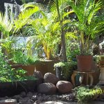 Restaurant garden at outdoor dining area