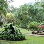 Hotel Villa Lapas - Il parco