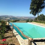 The infinity pool at the Podere Palazzone